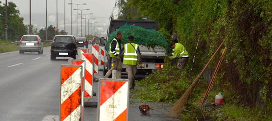 Verkehrsicherungsschnitt iba aktiv Wiesbaden